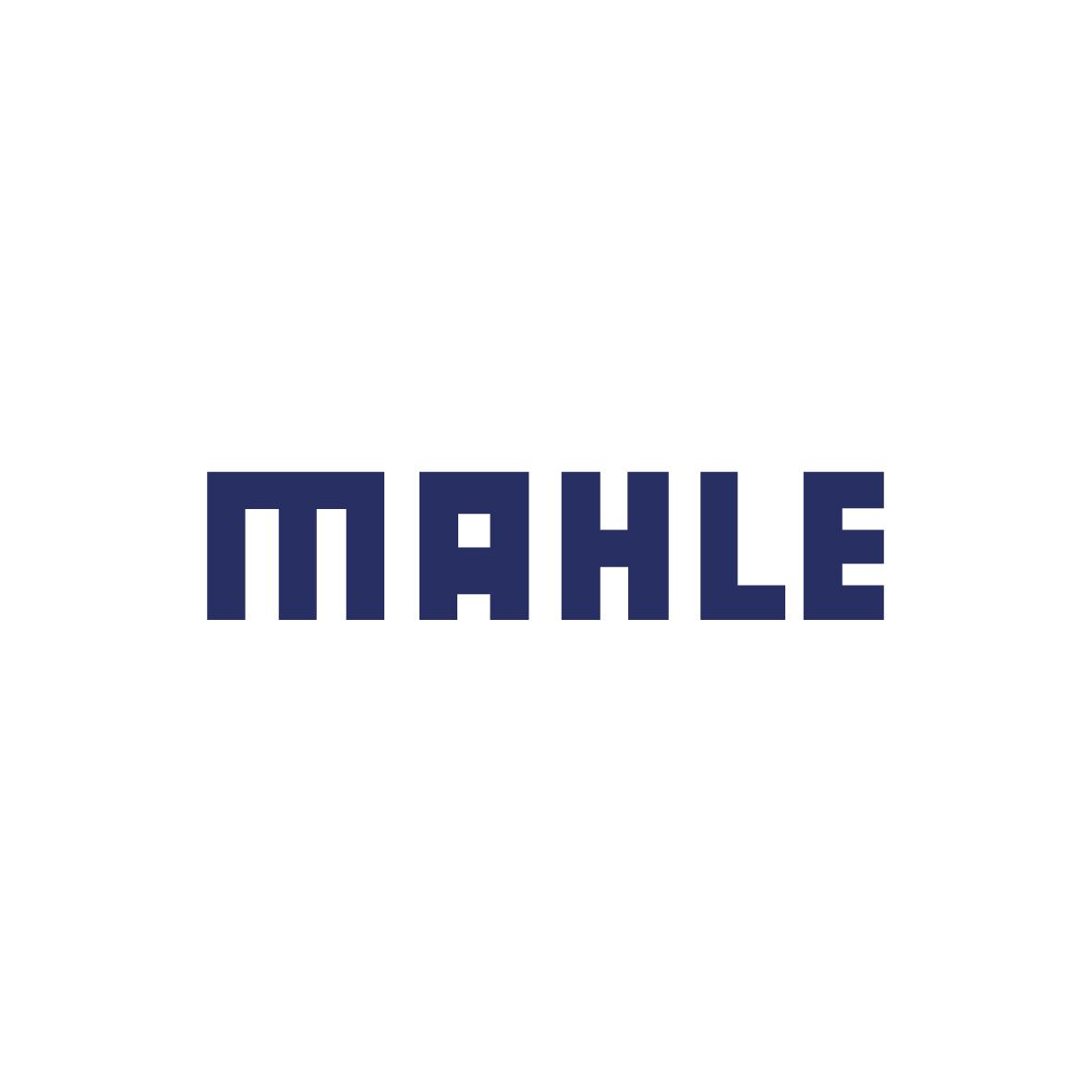 Mahle-125