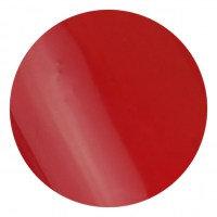 Brush & Go 4,5ml Farbgel G079