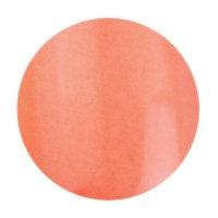 Brush & Go 4,5ml Farbgel G054
