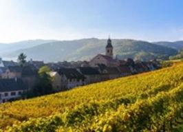 Alsace 2.jpg