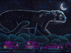 Illinois Black Panther