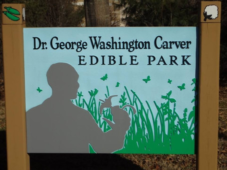 January Dr. George Washington Carver Edible Park Workday
