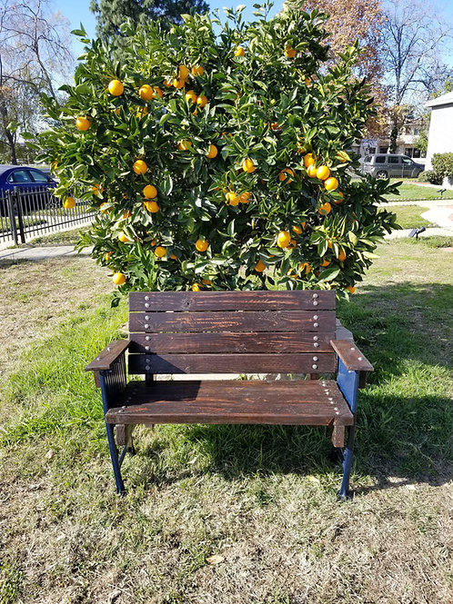 Upcycled Garden Bench