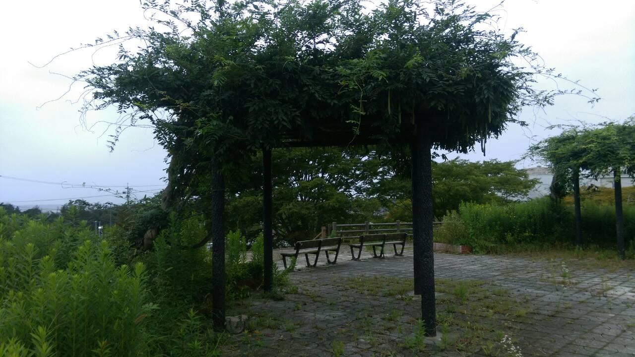 君が丘公園2