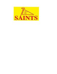 Saints Flag Logo.png
