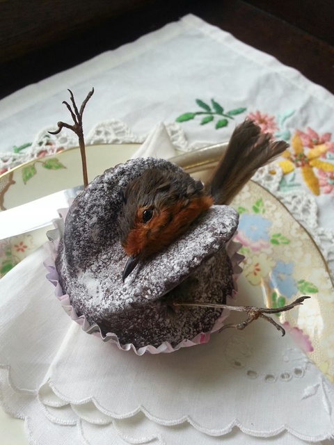 robin+choc+cake