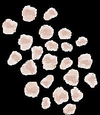element blush 27.png