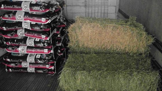 Hay bales and Roll Bales/ Pacas de alfalfa, de zacate y rollos de alfalfa.