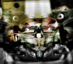 Portrait Entity. Rat.