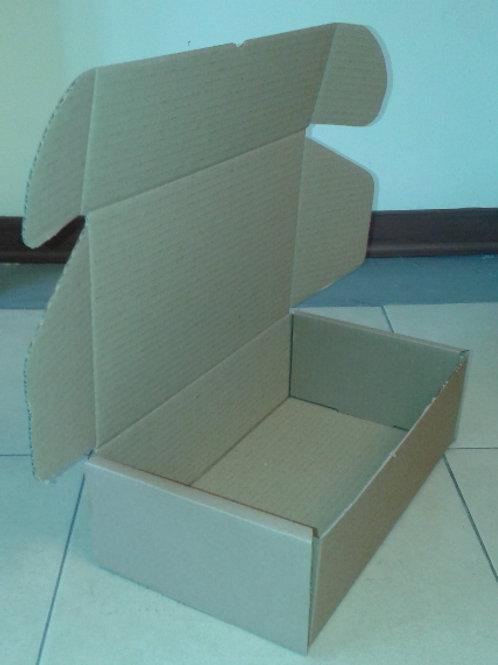 Scatola di cartone 31x18x10cm (10pz.)