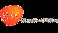 Logo GSKTransparente.png