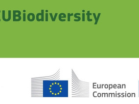 Assessment of Biodiversity Measurement for Approaches for Business and Financial Institutions report