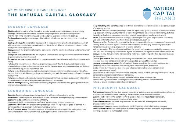 NCI Glossary_2021_IMG.png