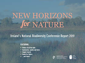 Full interactive report on Ireland's first National Biodiversity Conference free to download