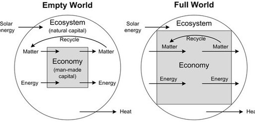 Ecological economics and the roots of natural capital