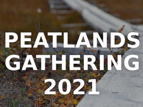 Peatlands Gathering is coming in October 2021 - register now for this exciting new online event