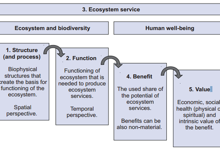 Making nature count: indicators for ecosystem services and natural capital