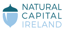 NaturalCapital%2520Ireland%2520logo_edit