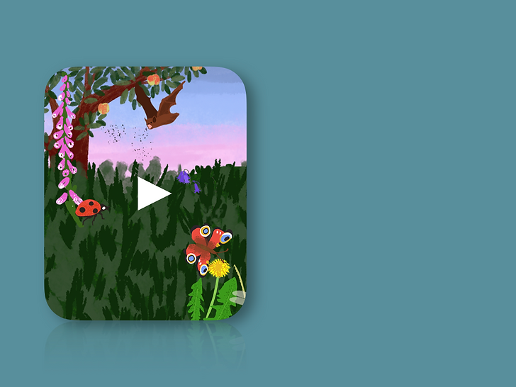 Animated nature scene with insects and animals