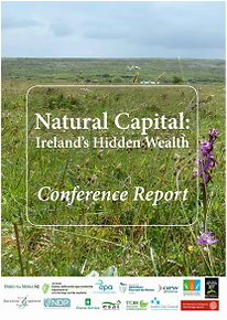 Conference Report 2014 Cover Image.png