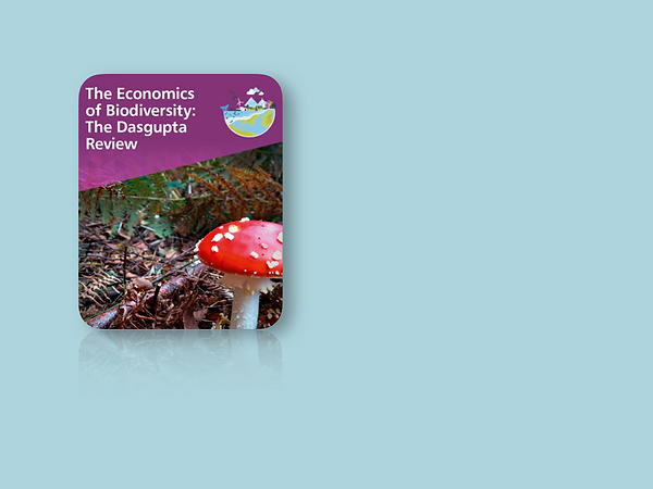 Front cover of document featuring a red fungi