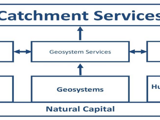 The role of natural capital in catchment management