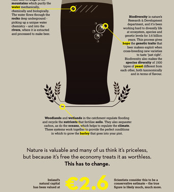 How much natural capital is in your pint?