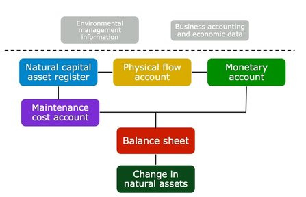 The Five Steps to Corporate Natural Capital Accounting
