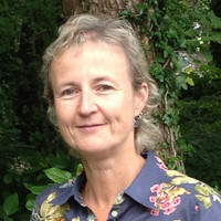 Dr Aileen O'Sullivan