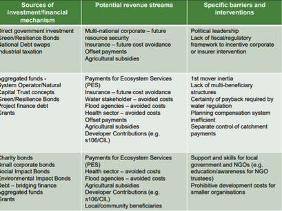 How can we drive investment in natural capital?