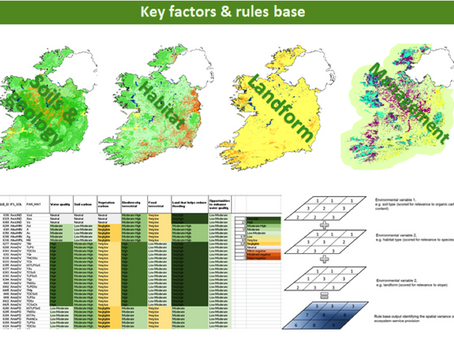 Ireland's progress in mapping natural capital