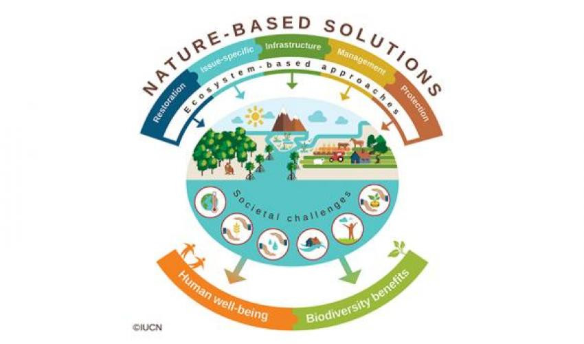 Colourful diagram depicting the relationship between Nature-based Solutions & various societal challenges