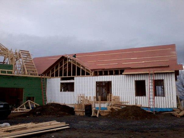 Plywood roof 2
