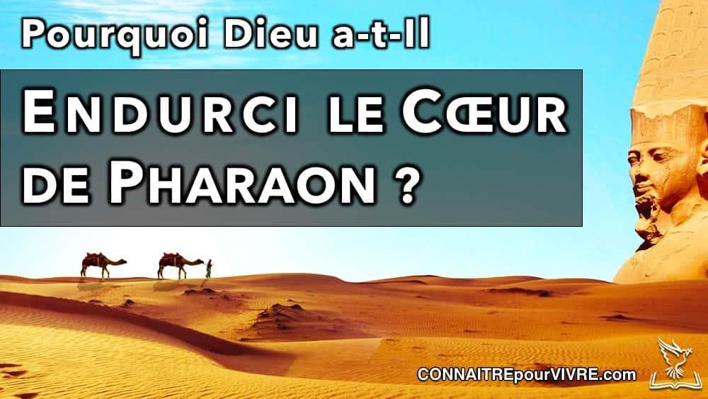 désert d'Égypte et statue de pharaon
