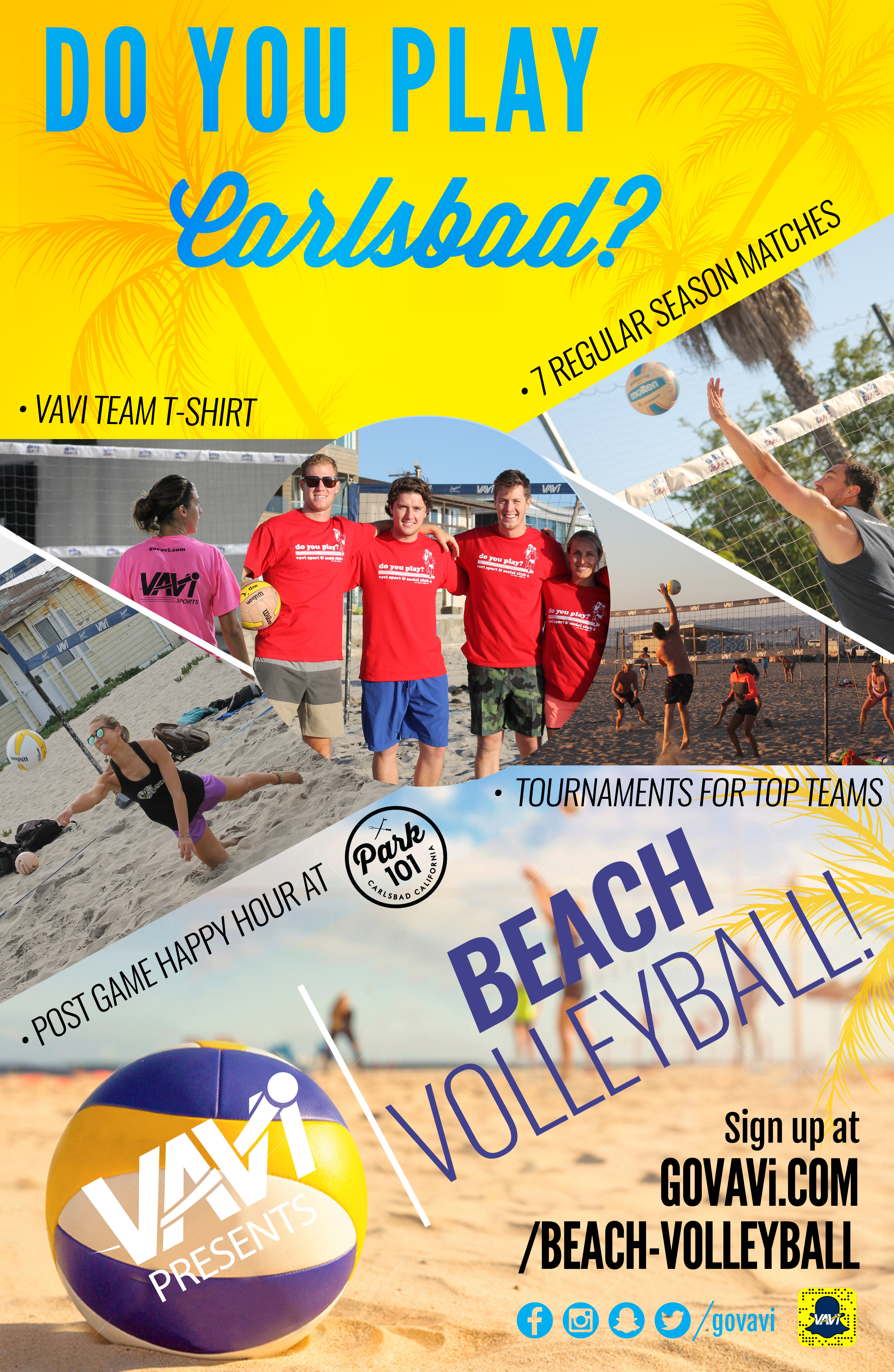 VAVi_volleyball_Poster