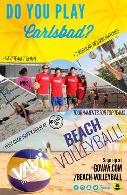 VAVi_volleyball_Poster