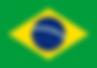 300px-Flag_of_Brazil.svg.png
