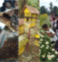 community beekeeping fpvi.jpg