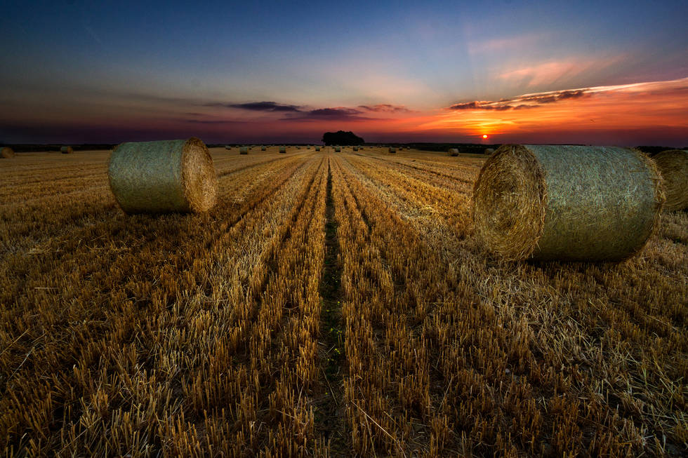 Hay Bales - South Wales