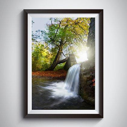 Woodland Falls