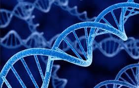 Prueba genómica evitaría quimioterapia en casos de cáncer de mama