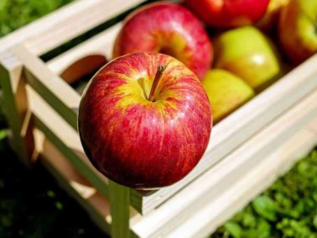 Gran Feria de la Manzana en Zacatlán