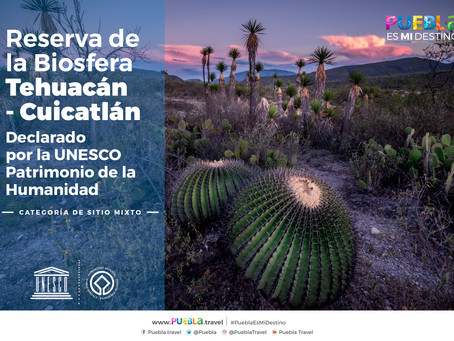 DECLARA UNESCO A LA BIÓSFERA DE TEHUACÁN-CUICATLÁN COMO PATRIMONIO DE LA HUMANIDAD