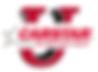 CARSTAR U logo