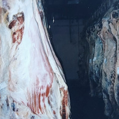 Carcass cooler at Lee Meats, 1999