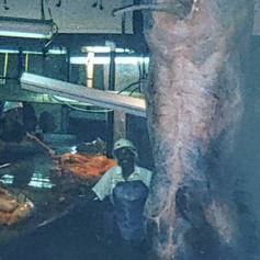Inspector Odell Riley is smiling, amused at being dwarfed by beef carcass, 1999