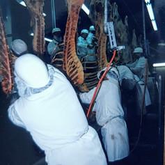 Boning room operations, Lee Meats, 1999.