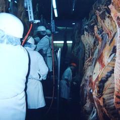 Boning room operations, Lee Meats, 1999