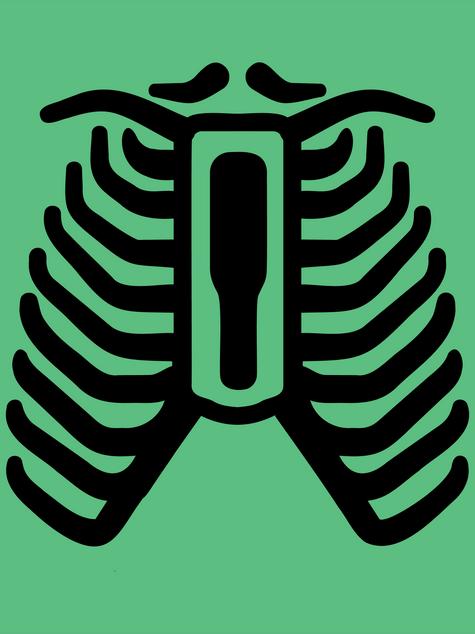 Anatomy Icons
