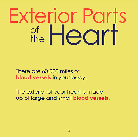 heart page 7 for website.png